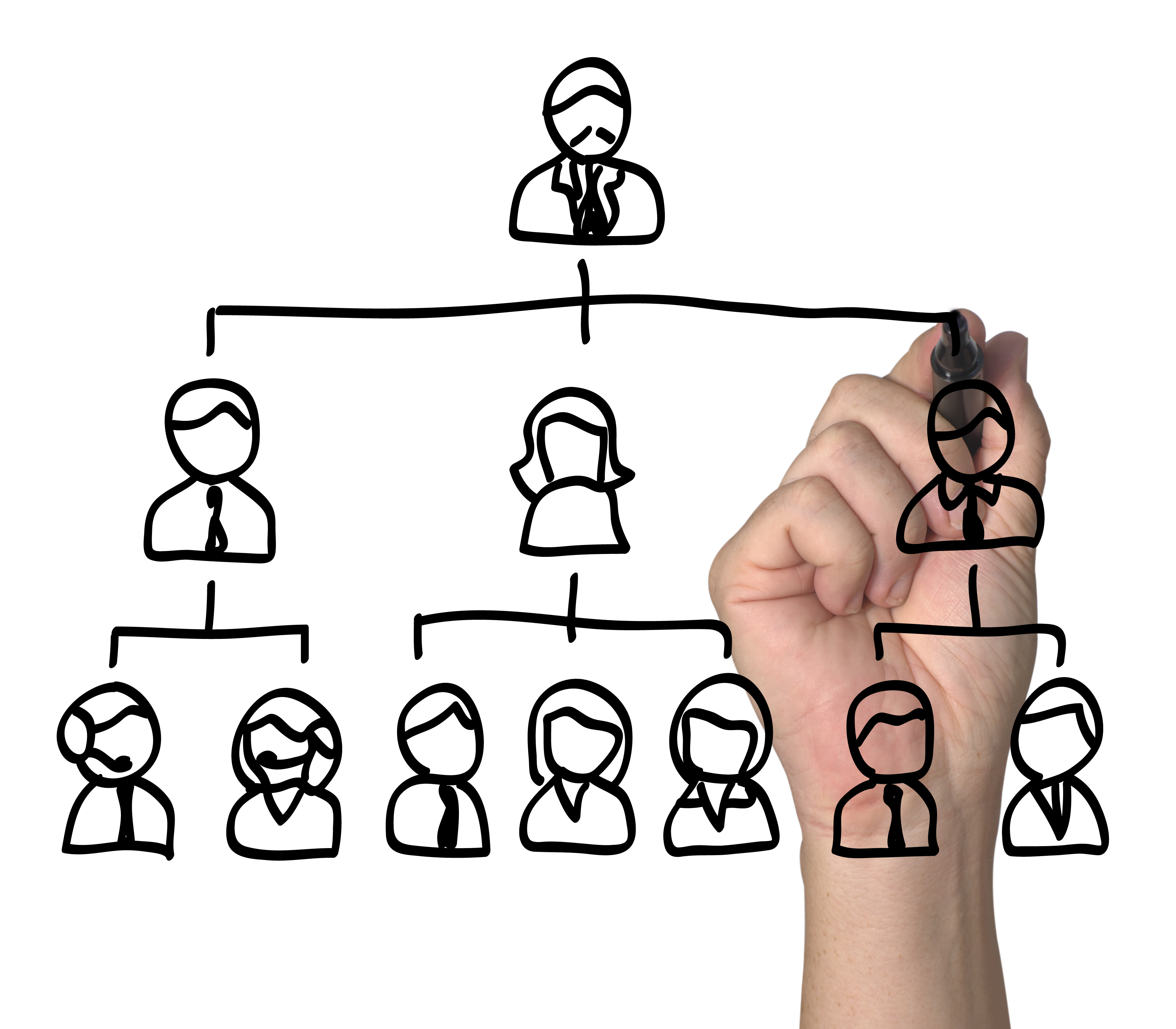 Claves De Una Estructura Organizativa Lineal Eae