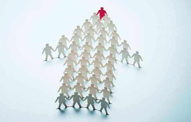 liderazgo organizacional