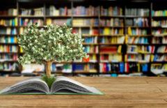 Siete libros fundamentales para una buena educación financiera