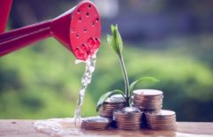 Invertir en startups, financiar el talento