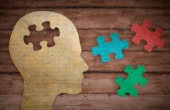 Enfoque multidisciplinario en la empresa
