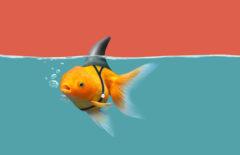 Competencia desleal: ejemplos y soluciones