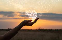 Neurodidáctica: definición y claves