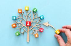 Árbol de decisiones: ejemplos de ventajas y pasos a seguir